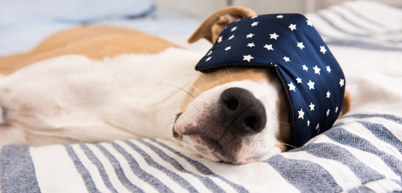Try these 10 tips to help you get a good night's sleep.